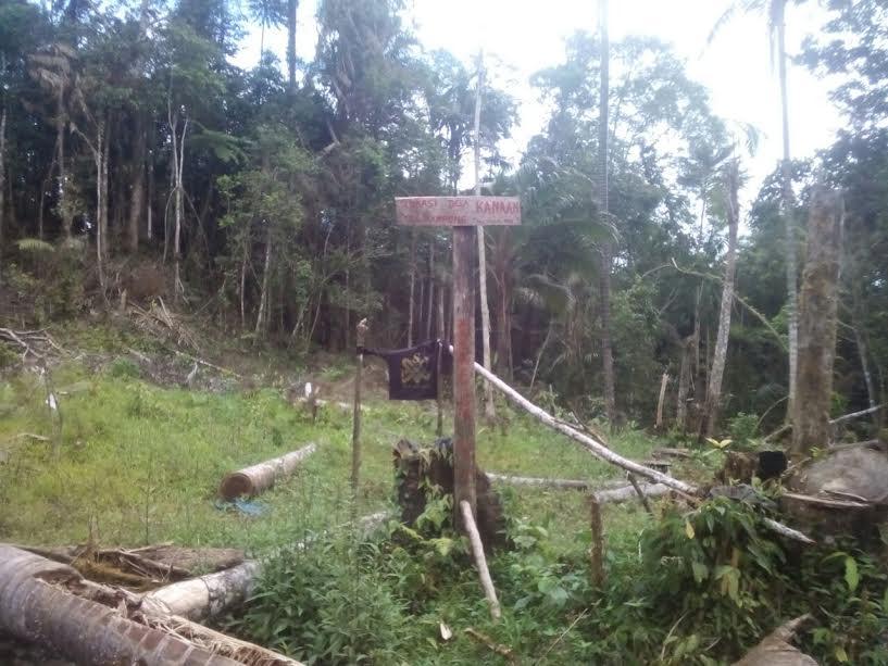 DPRD Sulut Bakal Kunjungi Hutan Lindung di Boltim Yang Dirusak Warga Minsel