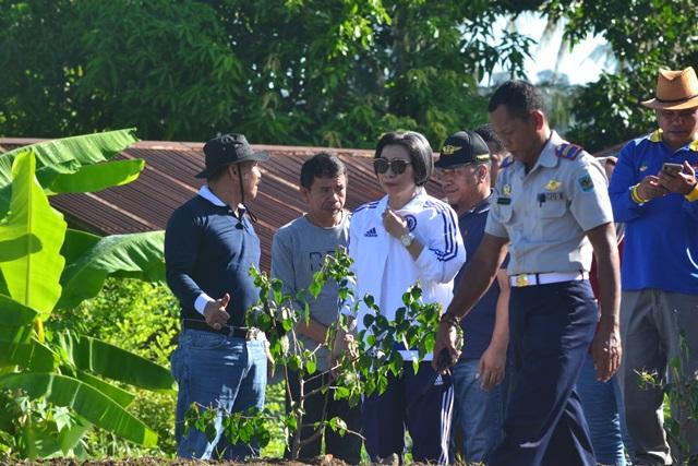 Pemkab Bolmong Percantik Kota Lolak Dengan Menanam Bunga