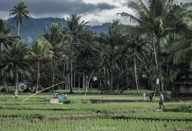 Petani di Bolmong Diharapkan Mengembangkan Mindset Agribisnis