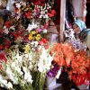 Jelang Tahun Baru, Usaha Bunga Milik Andini Laris Manis
