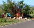Petugas Kebersihan DLH Boltim 'Sisir' Sampah Sepanjang Paret-Kotabunan