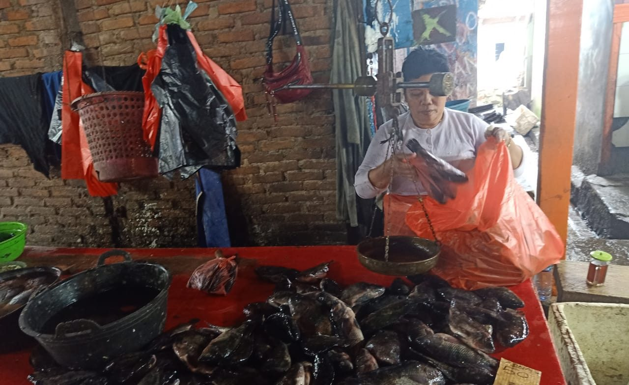 Terjual Ratusan Kilo Tiap Hari, Ibu Asal Gogagoman Ini Geluti Penjualan Ikan Air Tawar